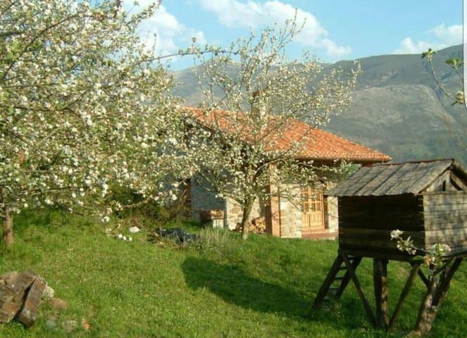 Casa rural cerca de Llanes - Playa y montaña
