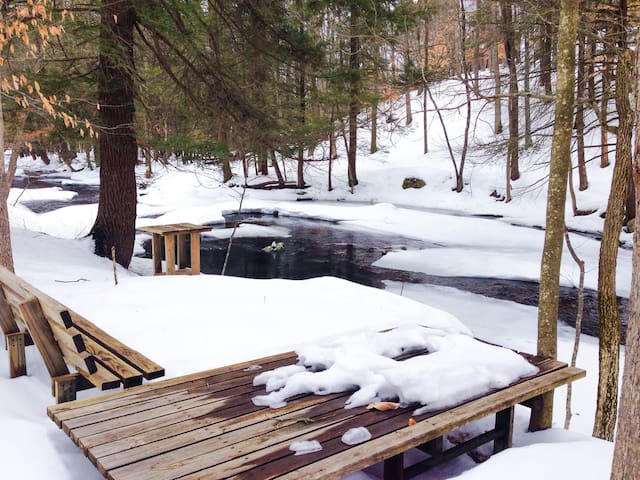 Forest Creekside Home: Ski season is opening Dec7!