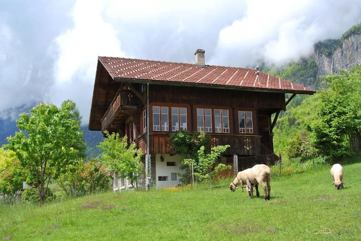 Chalet with garden and sauna - Brienz - House