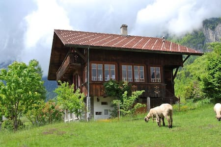 Chalet with garden and sauna - Brienz