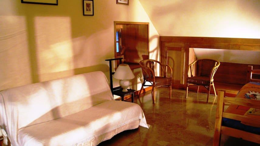 La deuxième chambre, servant de salon, et comprenant un lit simple de 90 par 200 et un canapé lit de 150 par 200.