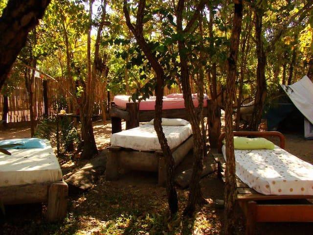 Camping na Chapada dos Veadeiros - Anápolis - Tent