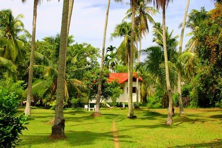 THE COCONUT GROVE KOH PHANGAN - Ko Pha Ngan - House
