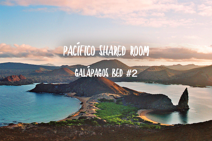 Pacífico Shared Room - Galápagos bed #2