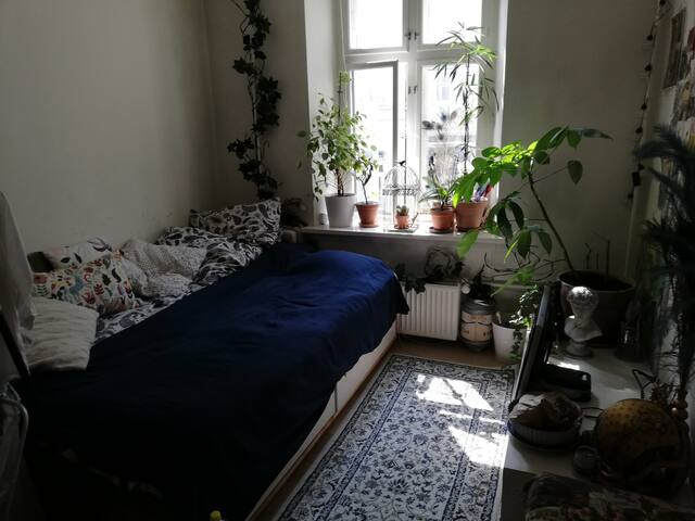 Warm and cosy room in Inner City
