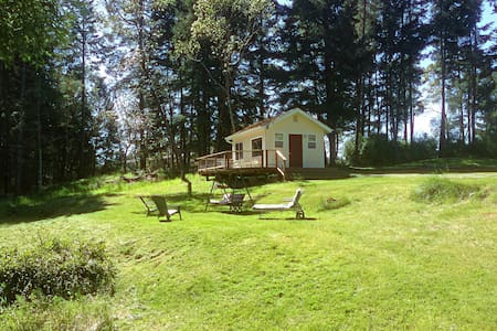 Charming Cozy Cabin - Friday Harbor - Kabin