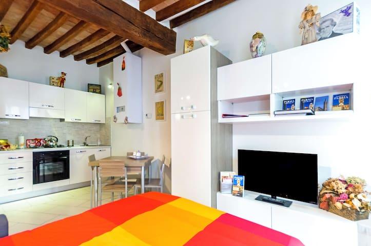 CASA SIMONETTA in BORGO - WI-FI ,ARIA CONDIZIONATA - Parma - Appartamento