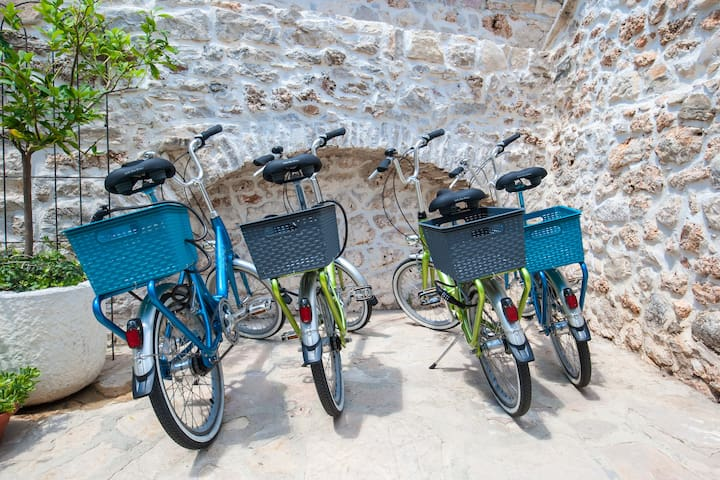 free city bikes for 4 people