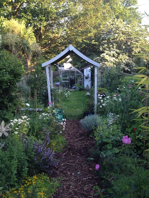 Peaceful garden to relax with your morning cuppa