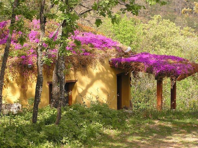 Apartamentos rurales Ecopangea  - Valverde de la Vera - Apartmen