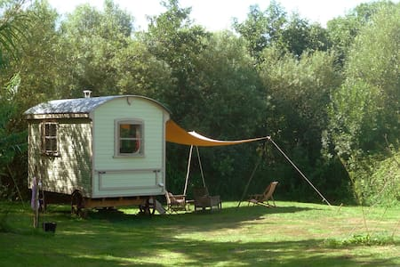 Beautiful Shepherds Hut - Whitchurch Canonicorum - Blockhütte
