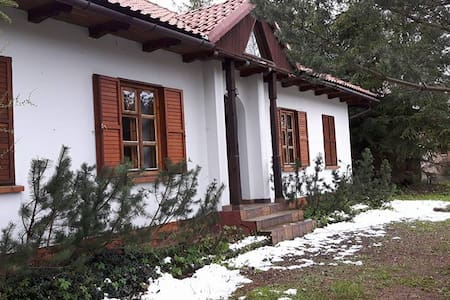 Big holiday house in Juszczyn - Juszczyn - 獨棟