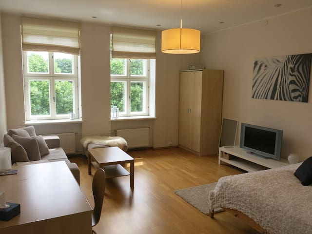 Large central apartment with parking