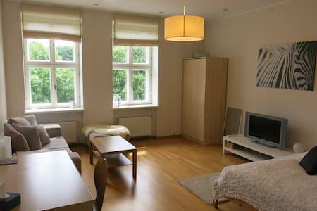 Spacious apartment in the centre - 塔爾圖