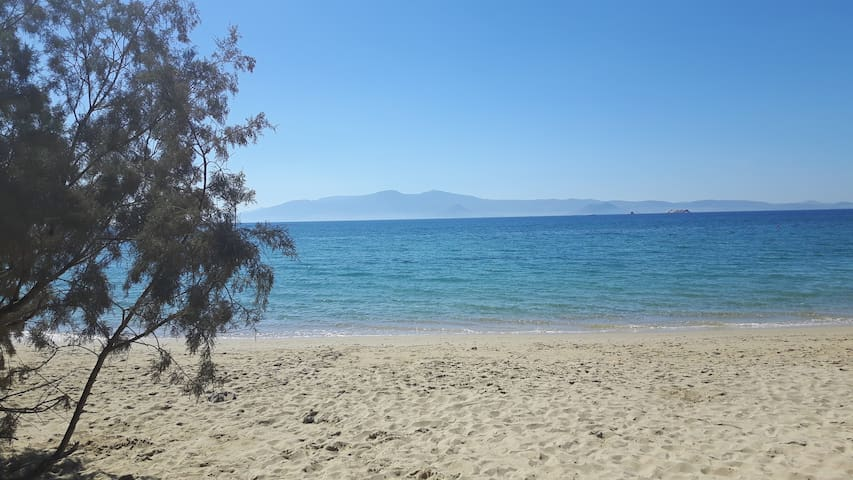 Depis on the beach -sea view studio(double room) - Plaka - Leilighet