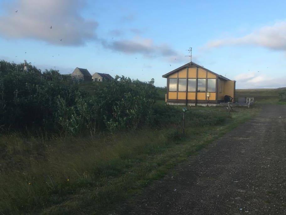 Gula Húsið - The Yellow House