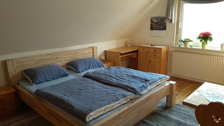 Dart-Billard-Zimmer (2+1 Betten)