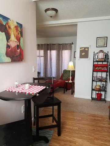 Apartment 15 min North of DOWNTOWN NASHVILLE!!!!