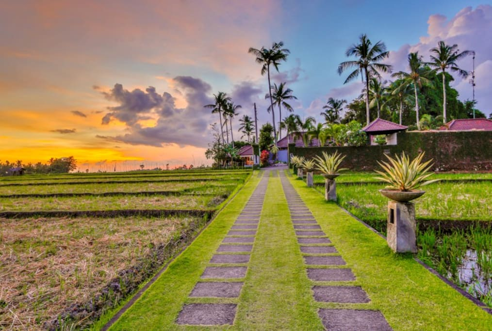Our private road to Villa Kaba Resort Bali.