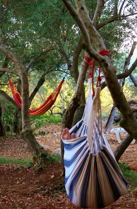 Hammocks for relaxing near rooms