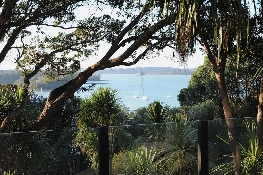 Views of Mahurangi Harbour through the treetops