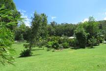 Contemporary home set in 11/2 acres secluded tropical paradise.  Many tropical fruit trees and herbs and spices grown.
