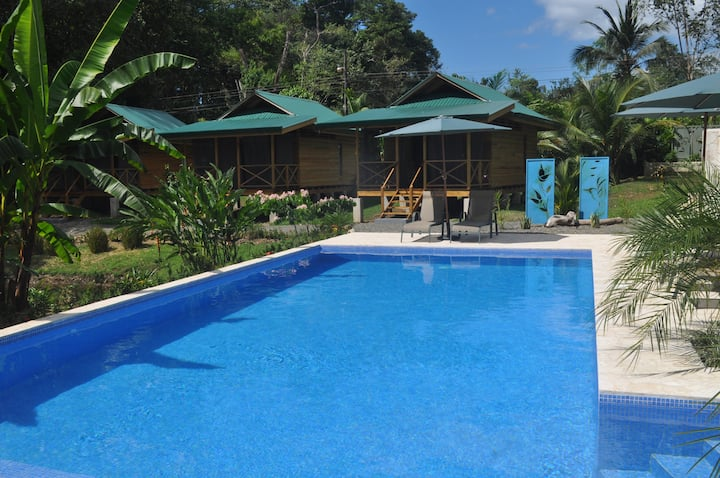 Natura Lodges : an amazing place in the nature
