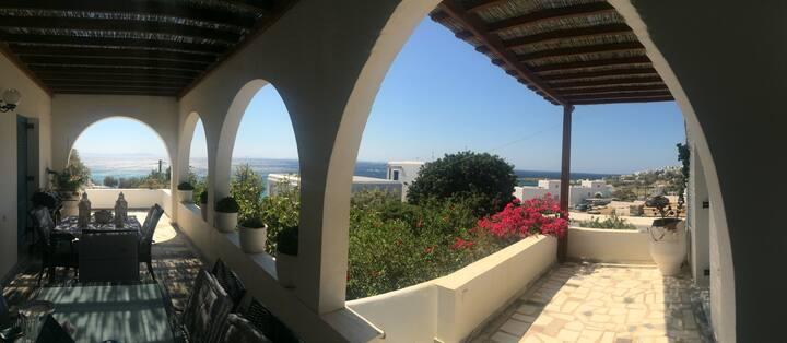 Amazing View Villa Nafsika - Laouti Skyladar Tinos