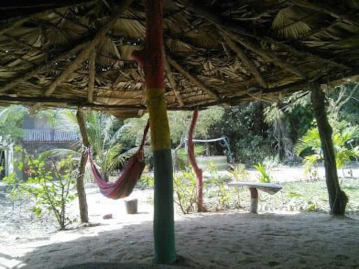 The Little Baobab - Chameleon Lodge