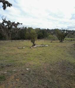 Villa de leyva farm - Villa de Leyva