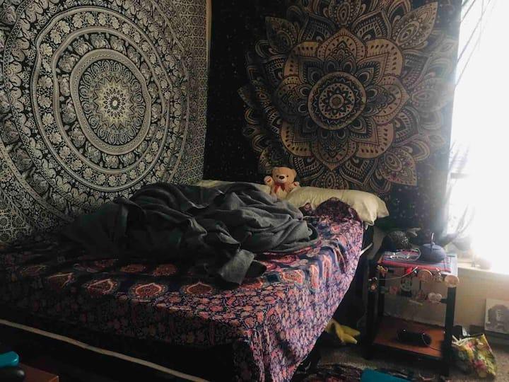 Cozy private bed & bathroom! 1 Mile to OU &Walmart