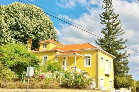 Quinta do Arvoredo in Beira Alta  - Mangualde Municipality