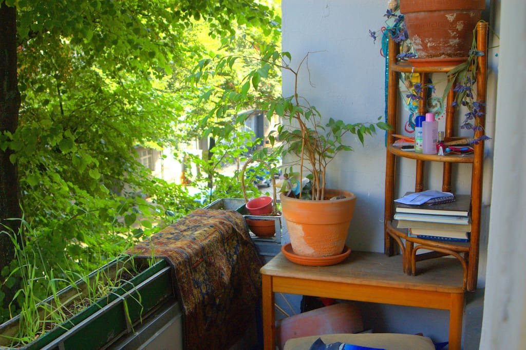 The little balcony oasis looking out on to a friendly street
