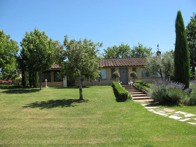 Exclusive & charming villa with pool 8 guests - Cecina - Villa