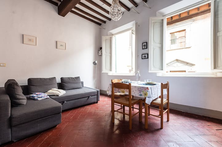 Open space in ancient tower house - Pisa - Apartmen