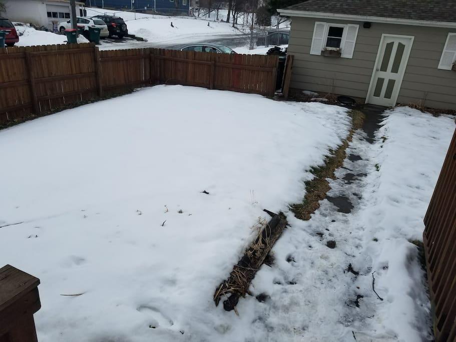 More of backyard