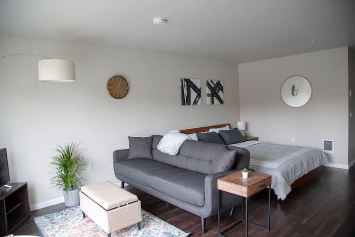 Superb Studio in Incredible Capitol Hill Location