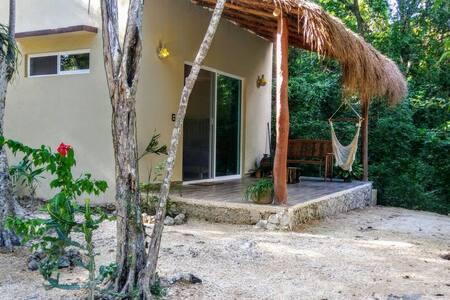 Jungle Suite (New!)