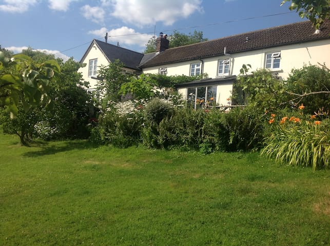 Delightful Cottage in Rural Dorset - Semley - House