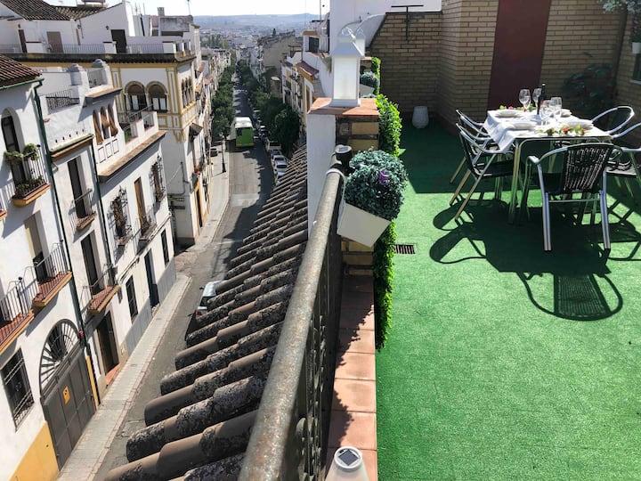 Atico con terraza independiente   SAN FERNANDO
