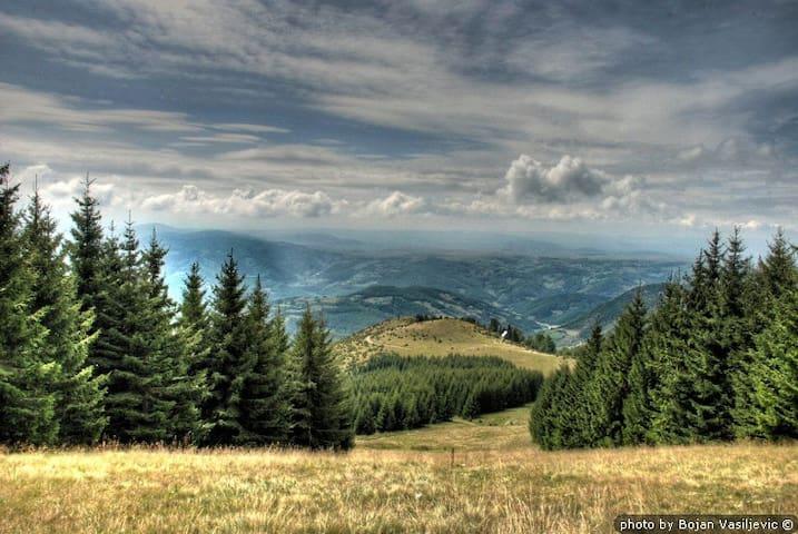 Cottage, Peaks of Golija, Serbia - Novi Pazar