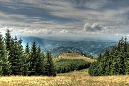 Cottage, Peaks of Golija, Serbia - Kunyhó