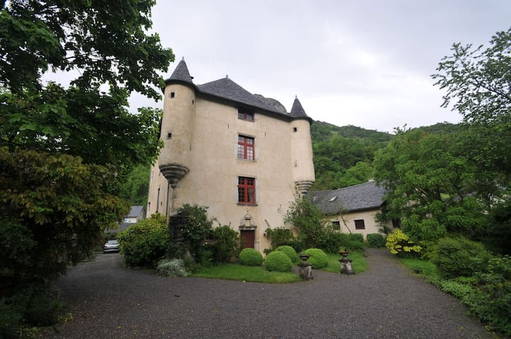 Manor House in the Pyrénées - Aste-Béon - Dom