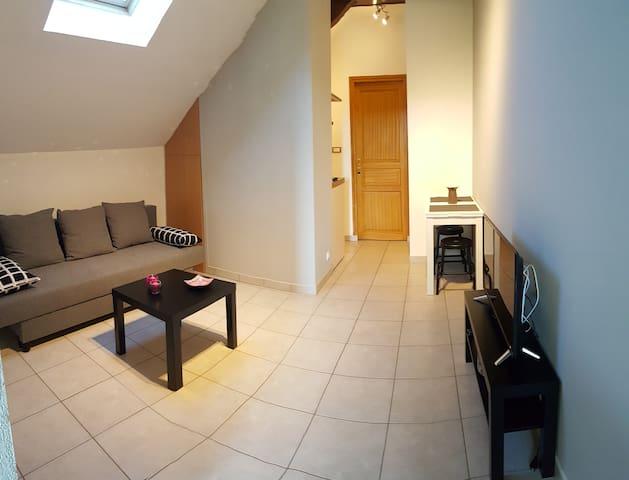 Appartement cosy, parfait pour découvrir Annecy !