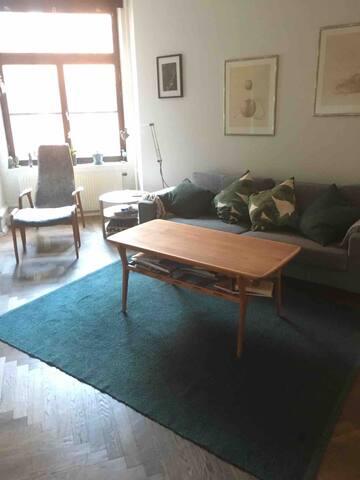 Nice room in the city centre, Malmö