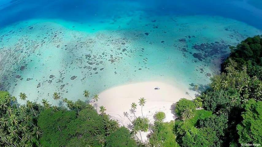 B&B Nature Song Island  ☆☆☆☆☆ - Huahine - Bed & Breakfast
