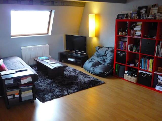 Superbe duplex Vieux Lille 53m2