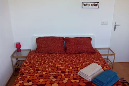 Bright room next to public transport - Daire