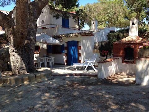 Favignana  ''Casa del pino''