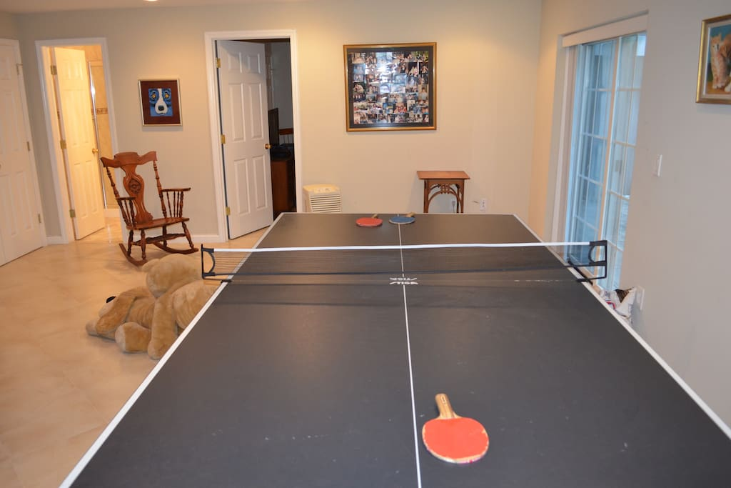Ping Pong in Your Family Room